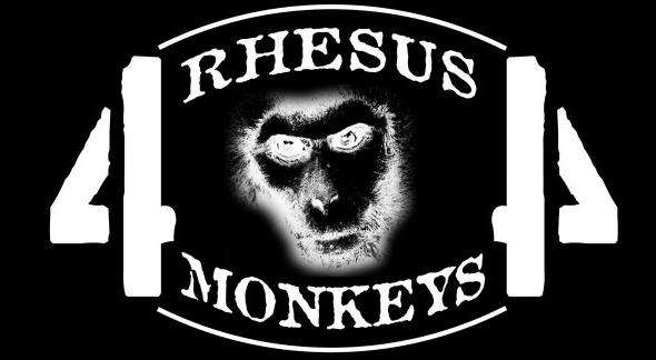 recorte-monkeys-1
