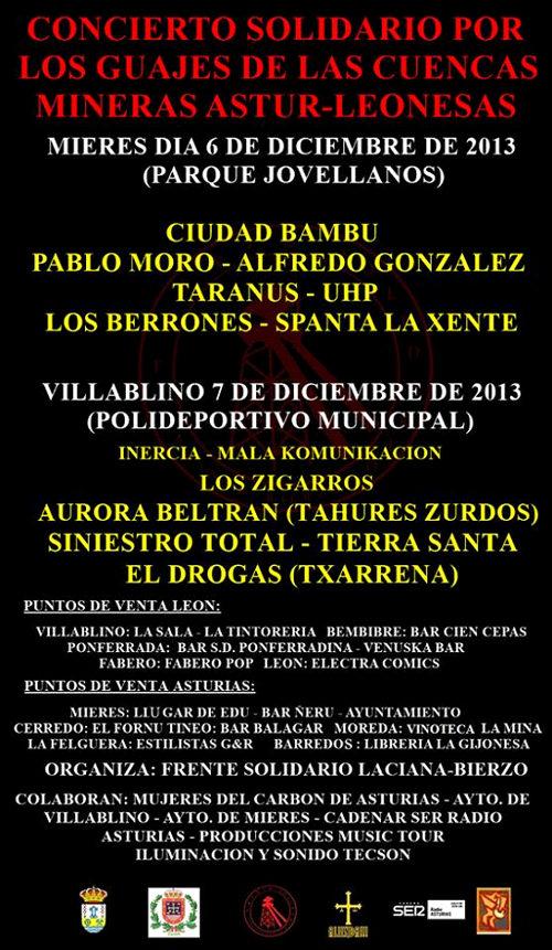 20131127-conciertosolidario